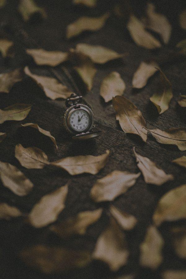 frunze ceas