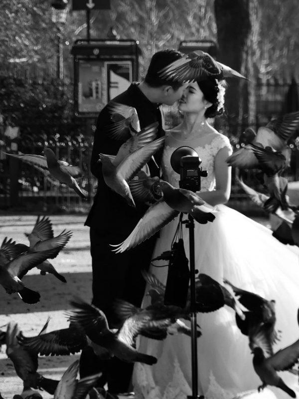 nunta miri