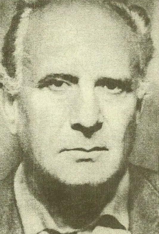 Dimitrie Stelaru