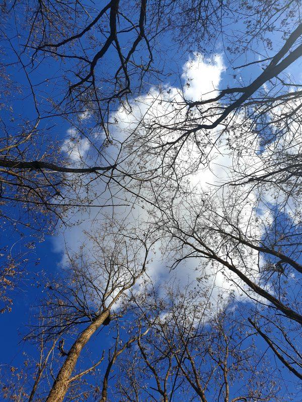 cer cu nori
