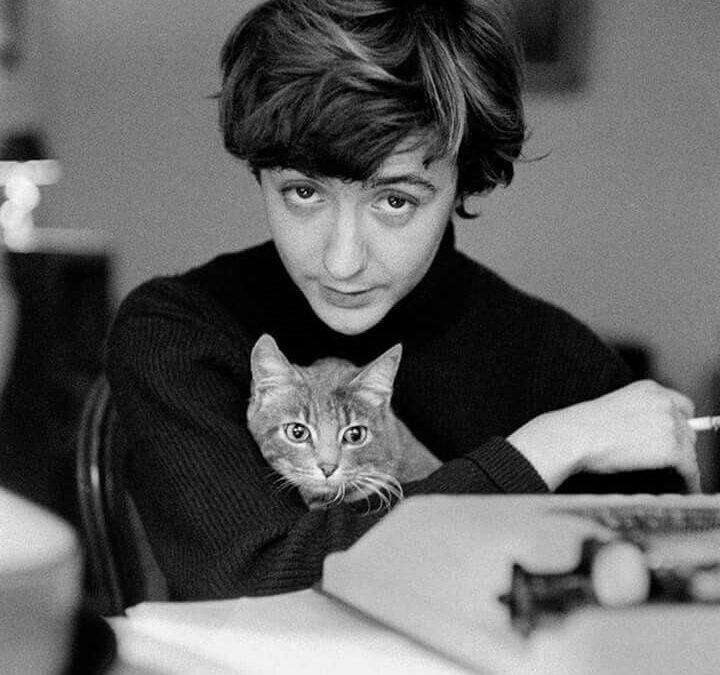 Ziua Pisicii… literate