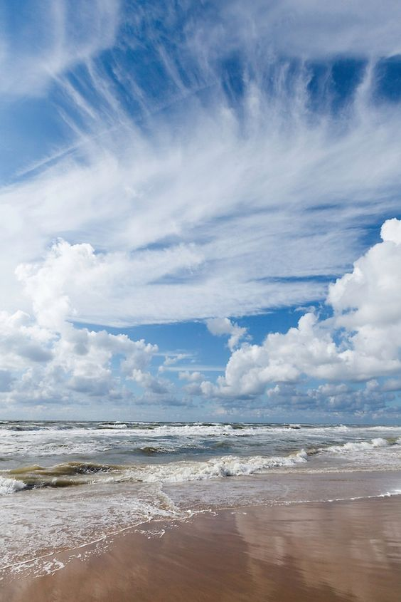 Bakkum-aan-Zee| Wolverlei Image Archive. Martin Stevens