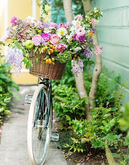 """""""A iubi e primăvară…"""" – cele mai frumoase poezii"""